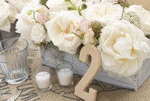 weddings / by Alycia Johnston