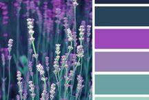 colours I like / by Nataša Žnidarič