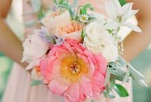 weddings . bouquet beauty / by Before the I Do's