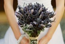 Wedding Stuff 5/17/13 / by Kelsey Ames