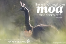 Fun stuff / by Air New Zealand