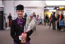 Valentine's Day  / The Air New Zealand Fairy's helpers made it rain chocolates and roses on Valentine's Day.  / by Air New Zealand
