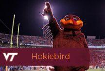 Hokiebird / by Virginia Tech Hokies Athletics