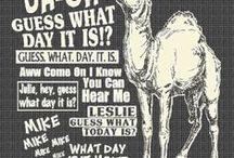 Some funny stuff / by Debbie Bluestone