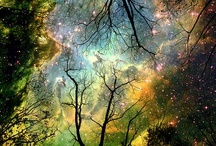 We are all in the gutter, but some of us are looking at the stars. ~ Oscar Wilde / by Amanda Henry