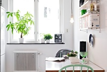 Kitchen / by Eve & Love Co.