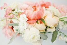 Bouquets, Wed Flower Settings / by Eve & Love Co.