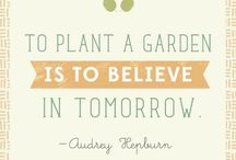 """I Garden... / """"Gardening is not a rational act."""" / by Whit Thiessen"""