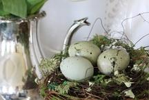 Spring/Easter / by Marsha Blatchford