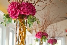 Wedding Centerpieces / by Pretty Pear Bride® | Shafonne Myers