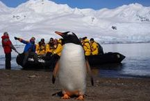 ✶ Win a Trip to Chile / Win a trip to Southern Patagonia in Chile and the Antarctic with Columbia. Get round-trip flights for two from the USA with LAN Airlines, with five days at EcoCamp Patagonia, hiking the W Trek in Chile's Torres del Paine National Park and ten days on a Quark Expeditions Polar Adventure. All this, plus new Columbia Sportswear TurboDown™ gear to keep you warm!  Enter now and discover where the adventure will take you!  (Only US residents can enter - see competition rules here). #sweeps #contest  / by EcoCamp Patagonia