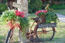 Outdoor: GARDEN CREATIVITY / Creative garden and terrace ideas / by Songbird Blog