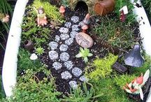 Fairy Gardening / by Mary White