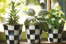 Herb garden / by Stefani Johnson Sume