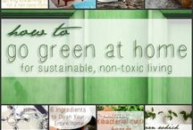 Green Home / by All About Juicing