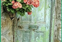 I love doors / by Alaine White