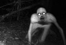 Creepy.../Horror  / by Ashley Rouse