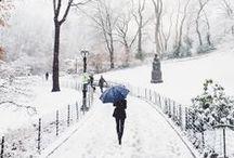Winter / by Rachel Follett