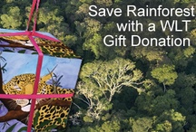 Shop to Save Rainforest / Products to buy or gift ideas that support the World Land Trust (WLT) and help save rainforest and other threatened habitats. Some of these ideas are at no extra cost to you but still raise money for the WLT! / by World Land Trust (WLT)