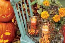 It's Fall Y'all!  / by Jordan Solomon