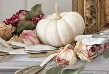 Autumn Decor / by Leopoldina Haynes