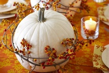 Thanksgiving & Harvest Decor / by Kimbercrafts