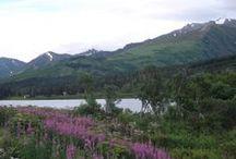 Alaska / by Amanda Marceaux