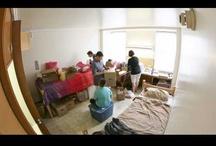 Dorm Decor / by Fontbonne University
