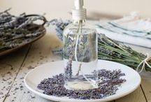Natural - Casa / Productos de limpieza DIY / by Paula Mariani
