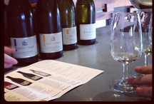 From the Cellar / by HunterValley