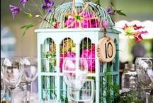 Birdcages / by Gwen Gyldenege