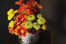Thanksgiving Tablescapes / by Homeclick.com