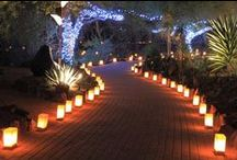 PATH LIGHTING / Light the way for guests to make a safe entry into your home at night with path, post, flood, spot, step, solar and deck outdoor lighting.  Not only do these fixtures add a safety feature to your outdoor living space at night, but can double as decorative accent pieces during daylight hours. / by Homeclick.com