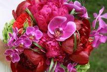 wedding florals / by Chateau Freelance Floral