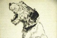 WHFTs / The Wire Haired Fox Terrier. A cantankerous breed.  / by Nicole Samples Wiedeman