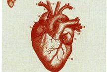 Anatomical Heart / by Raymanda Amundo