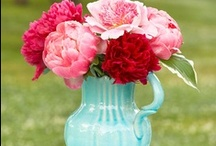 Mother's Day Ideas / by SimplyFun