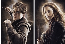 Harry Potter Lover <3 / by Rose Godinez