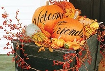 Fall Decorating / by Kristi Hastings