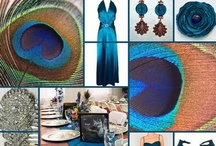 Peacock Feather Wedding Ideas / Ideas for incorporating peacock feathers into wedding, shower, and party decor. / by Something Floral