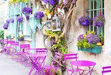 All Things Francais....Encore / by Diane Reheis