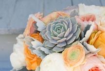 Flower Inspiration / by Marcella Friedrich