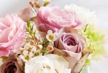 Floral Loveliness / by Jennifer Marie Estes
