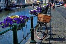 Holland / by Truus van Huis