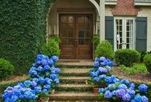 Landscaping ideas/flowers / by DesignHouse - Debra Taylor Purvis