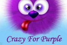 Purple!! / Anything Purple / by Susan Schroeder