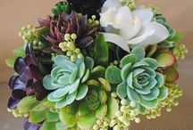 Floral Designs / I like doing floral design in my spare time, I attended floral design school in Chicago, have worked at various floral shops and at a wholesale florist supplier. / by Pamela Lee