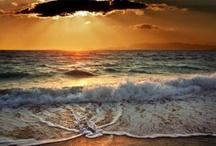 I love the beach! / by Emily Dorough