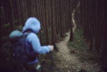 into the woods. / by Iaurel edwards