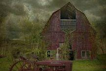 Barns / by Bev Wood